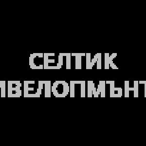 Селтик Дивелопмънтс